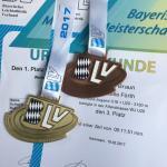 Michelle Braun Triathlon-Blog: Bayerische Crosslaufmeisterschaften 2017