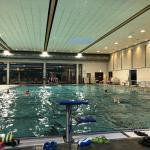 Taliso Engel Schwimmblog: Training, Training, Training