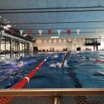 Taliso Engel Schwimmblog: Wieder voll im Training